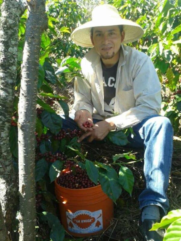 El Salvador - Finca Sosa (Pacamara Honey) -