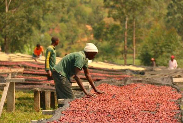 Burundi Gahahe -