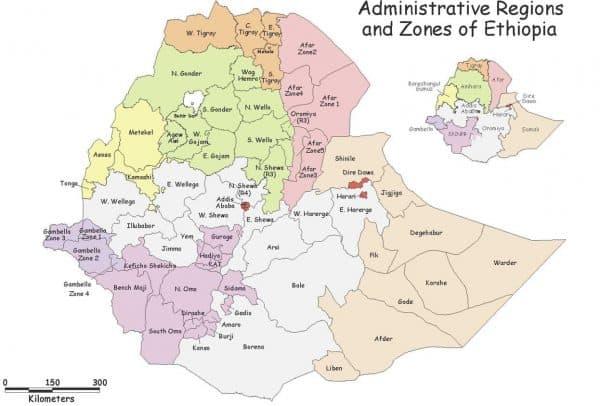 Ethiopia Yirgacheffe Bekele Natural -