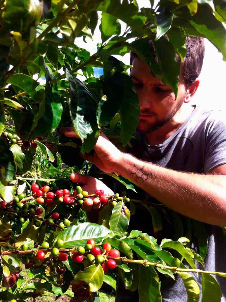 zeris-coffee-roaster-nuestros-valores